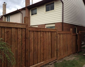 fences1